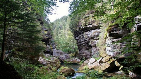 Jetřichovice, Vlčí Hora, Kyjovské údolí